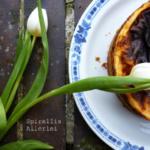 {Kuchen&Torten} Schmand-Mandarinen-Kuchen wie von Muddi