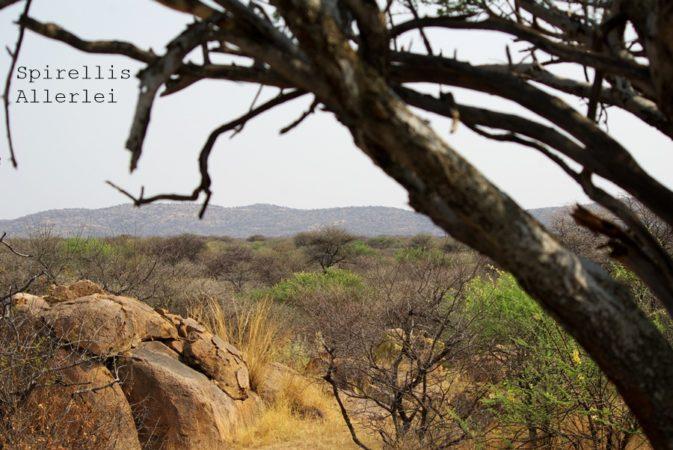 spirellis-allerlei-namibia-aussicht