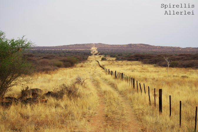 spirellis-allerlei-namibia-sandpad