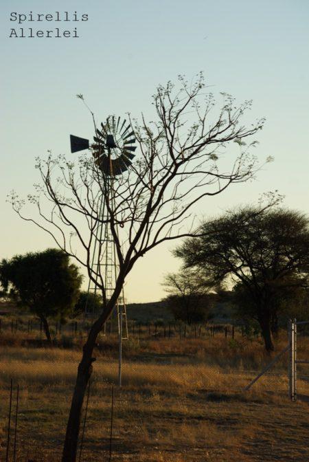 spirellis-allerlei-namibia-windrad