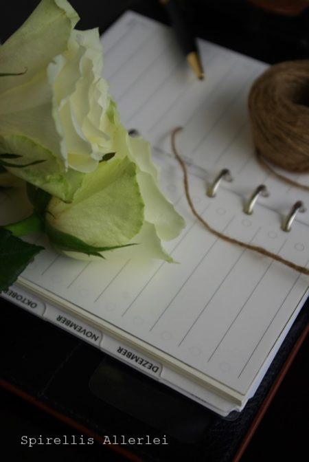 spirellis-allerlei-oktober-links