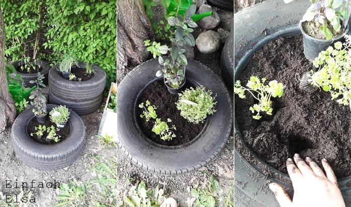 Einpflanzung-Minihochbeet-Autoreifen