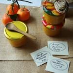 {Aufstriche&Dips} Mango-Mandarinen-Chutney