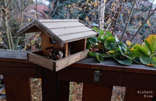 selbstgemachtes-Vogelfutter