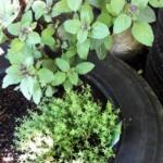 {DIY} Autoreifen Upcycling: Minihochbeet bauen